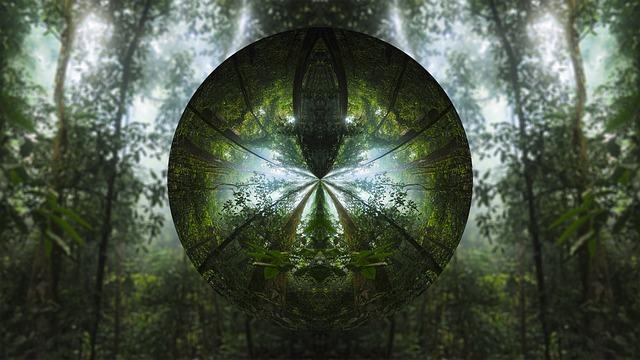 tree-1827317_640
